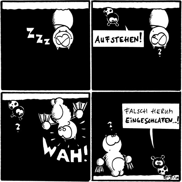 Fred schläft an der Decke.  Käfer: Aufstehen!  Fred erwacht: WAH!  Käfer: Falsch herum eingeschlafen...!