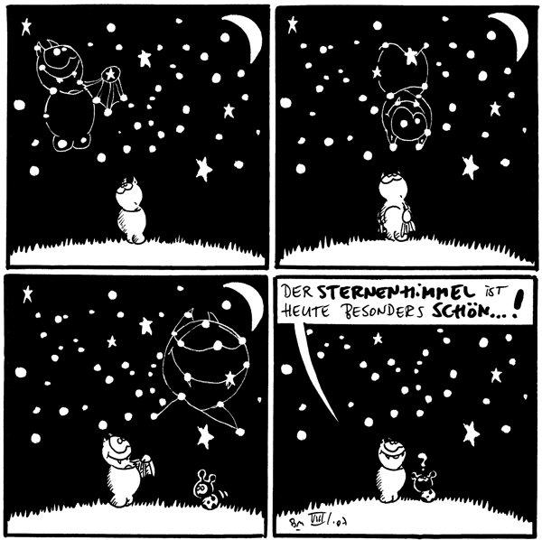 [[Fred betrachtet den Sternenhimmel und sieht sich selbst darin]]  [[Fred betrachtet den Sternenhimmel und sieht sich selbst hängen darin]]  [[Fred betrachtet den Sternenhimmel und sieht sein Gesicht darin]]  Fred: Der Sternenhimmel ist heute besonders schön...! Käfer: ? [[Käfer sieht nur die Sterne]]