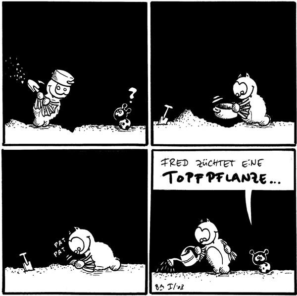 [[Fred gräbt mir einer Schaufel. Er trägt einen Topf auf seinem Kopf.]] Käfer: ?  [[Fred legt den Topf in das gegrabene Loch.]]  [[Fred drückt die Erde über dem eingegrabenen Topf fest an.]] Fred: *pat* *pat*  Käfer: Fred züchtet eine Topfpflanze... [[Fred gießt den eingegrabenen Topf.]]