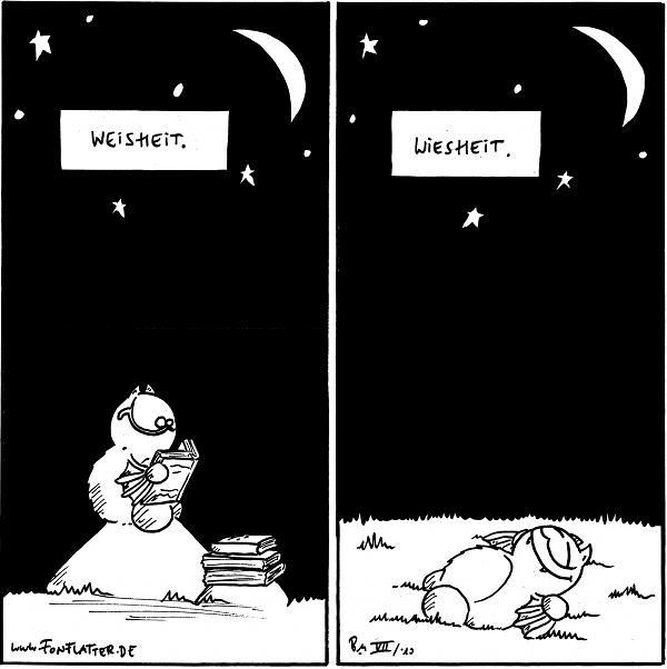 Fred: Weisheit. [liest auf einem Stein unter dem Sternenhimmel]  Fred: Wiesheit. [liegt auf der Wiese unter dem Sternenhimmel]  {{alt-text: Lasst uns wiese sein!}}