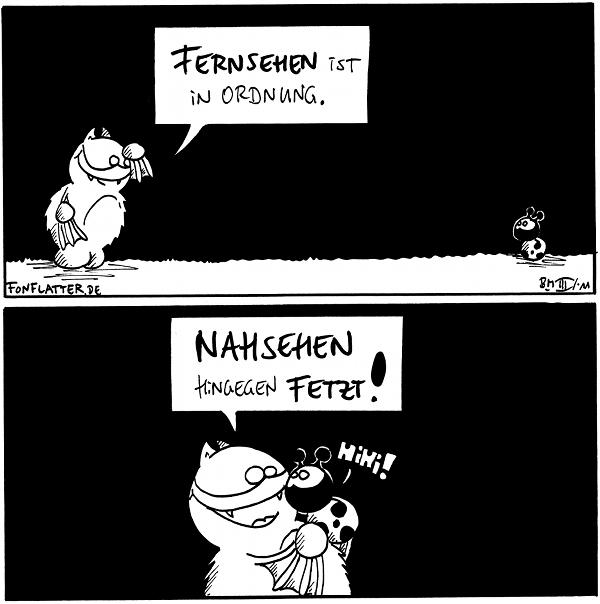 Fred: Fernsehen ist in Ordnung. [[Fred und Käfer sind weit auseinander]]  Fred: Nahsehen hingegen fetzt! [[Fed hält Käfer in der Hand]] Käfer: Hihi!  {{HiHi}}