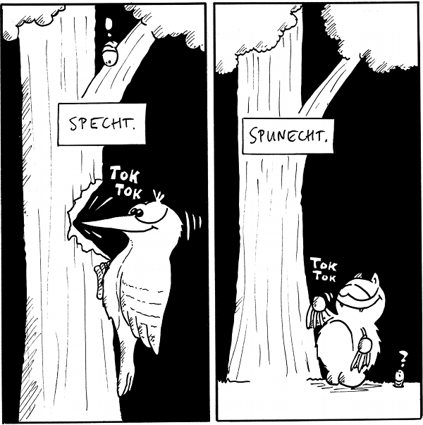 Panel 1: ein Specht klopft am Baum: SPECHT. Panel 2: Fred klopft am Baum: SPUNECHT.  {{Tok -- Allerdings hat Fred auch n'en Vogel. -- Es sei übrigens der Herr Wodpecker68 lieb gegrüßt. Einfach so.}}