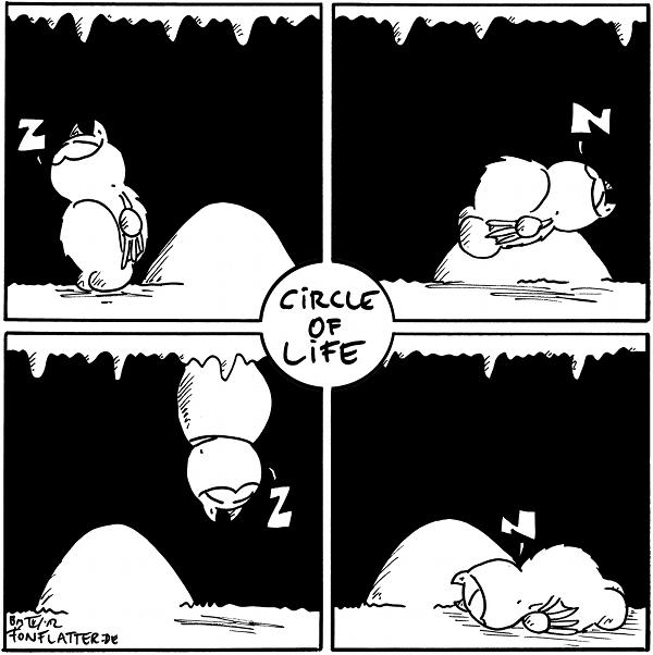 """[[Vier Panels, in der Mitte befindet sich ein runder Ausschnitt mit der Beschriftung """"Circle of Life"""".]]  [[Links oben: Fred steht schlafend neben dem Stein.]] Fred: Z  [[Rechts oben: Fred liegt schlafend rücklings auf dem Stein.]] Fred: Z  [[Rechts unten: Fred liegt schlafend bäuchlings vor dem Stein.]] Fred: Z  [[Links unten: Fred hängt schlafend über dem Stein.]] Fred: Z  {{Und mit 'lying' ist nicht 'lügend' gemeint.}}"""