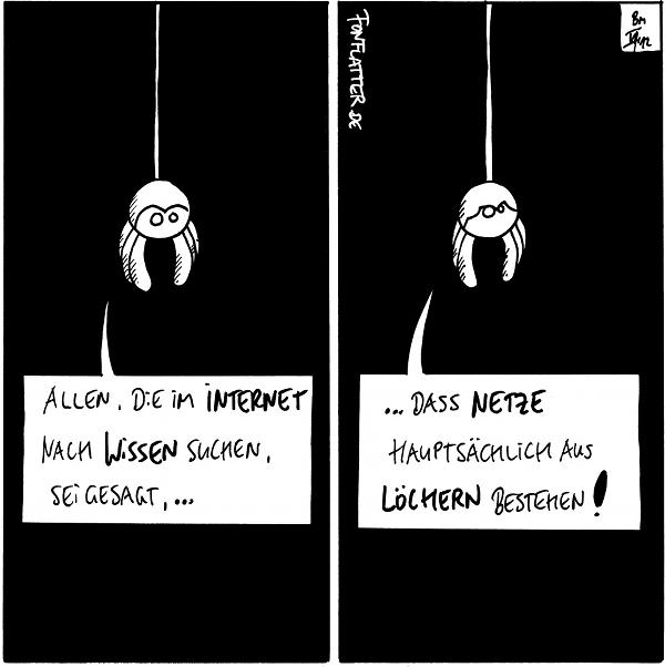 Spinne: Allen, die im Internet nach Wissen suchen, sei gesagt,...  Spinne: ...dass Netze hauptsächlich aus Löchern bestehen!  {{Vielleicht gelingt es ja, Wissenslücken mit Webcomics zu stopfen. Oder mit Cookies.}}