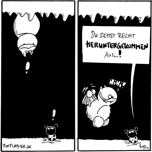 Fred [[hängt an der Höhlendecke]]: ! Käfer [[schaut vom Höhlenboden hoch zu Fred]]: !  Fred [[flattert runter zu Käfer]]: Hihi! Käfer: Du siehst recht herutnergekommen aus...!  {{Im ersten Panel hatte Fred eine kleine Hochzeit.}}